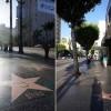 Vinterferie i Los Angeles